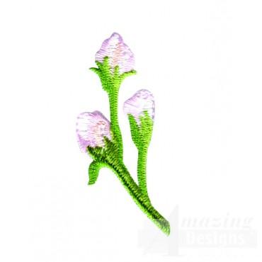 White Crabtree Flower Bud