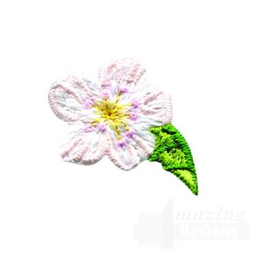 Pear Blossom 4