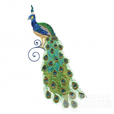 Swnpa140 Peacock Embroidery Design