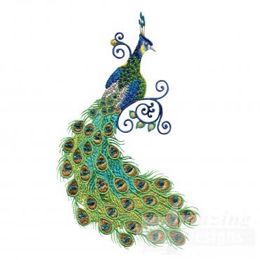 Swnpa142 Peacock Embroidery Design