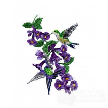 Swnhe141 Hummingbird Enchantment Embroidery Design