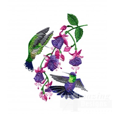 Swnhe142 Hummingbird Enchantment Embroidery Design