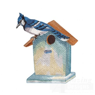 Blue Jay and Birdhouse