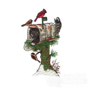 Birds on Mailbox