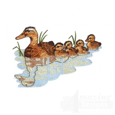 Duck and Ducklings