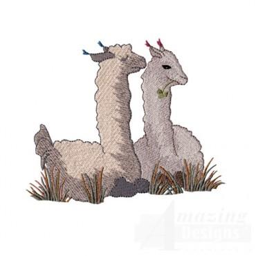 Llamas