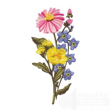 Cone Flower, Buttercup, Phlox