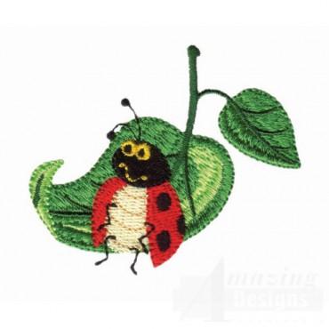 Ladybug Lounging