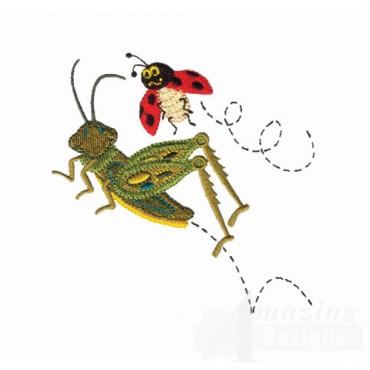 Grasshopper And Ladybug