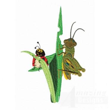 Ladybug And Grasshopper Eating