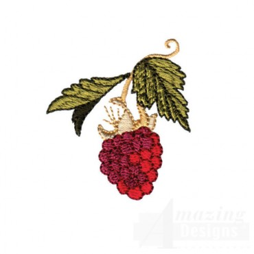 Raspberry On Vine