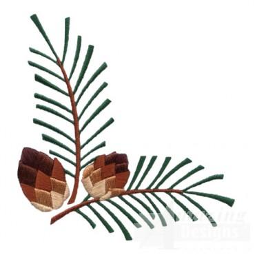 Pine Boughs 2