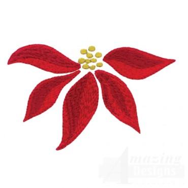 Poinsettia 5