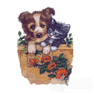 Puppy And Kitten On Fence