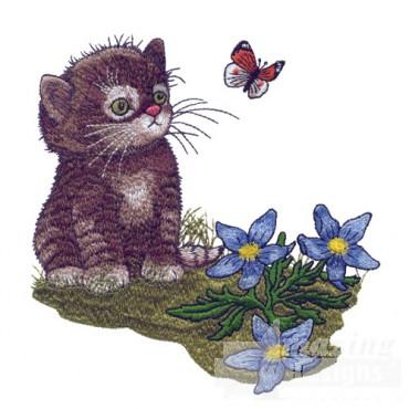 Kitten With Butterfly 2