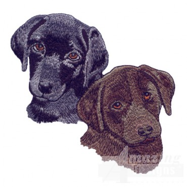 Black And Chocolate Lab Heads