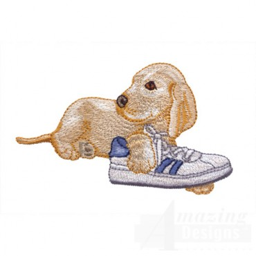 Pup With Shoe