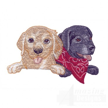Yellow And Black Lab Heads 2