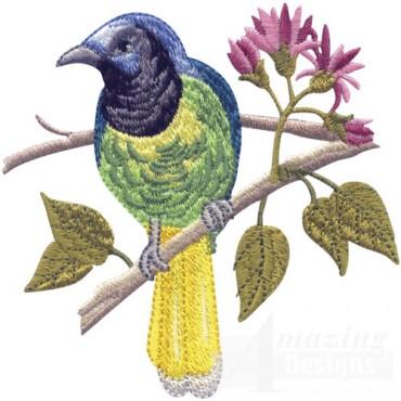 Tropical Bird On Branch 2