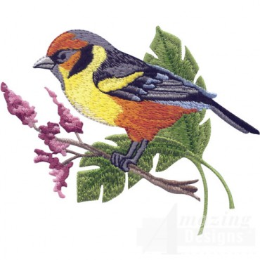 Tropical Bird On Branch 3