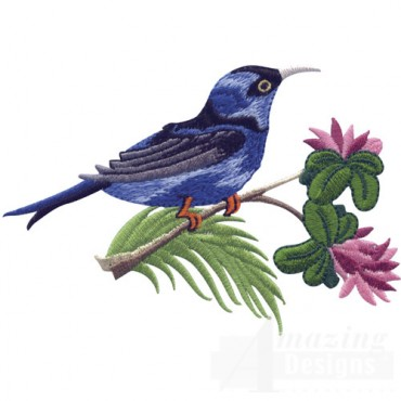 Honeycreeper 2