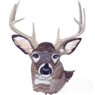 Buck Head 2