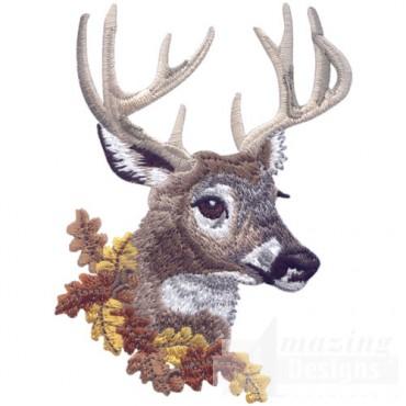 Buck Head 3