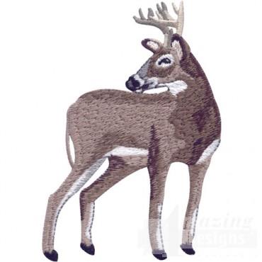 Standing Buck 2