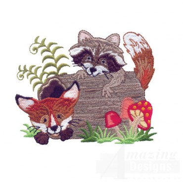 Raccoon And Fox