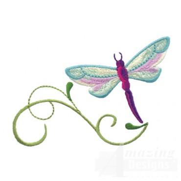 Dragonfly 11