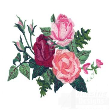 Rose 12