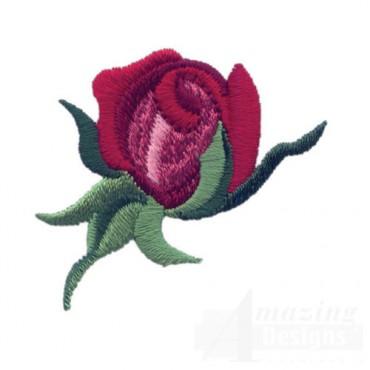Rose 27