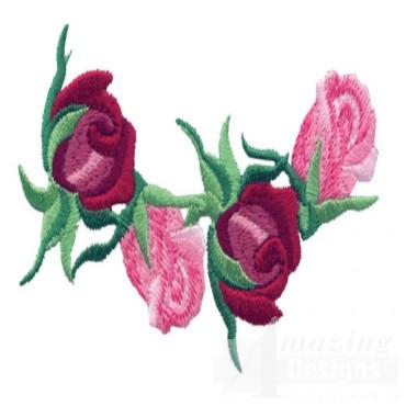 Rose 33