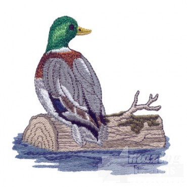 Duck On Log 2