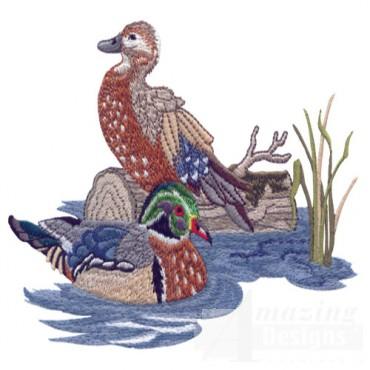 Duck Pair 2