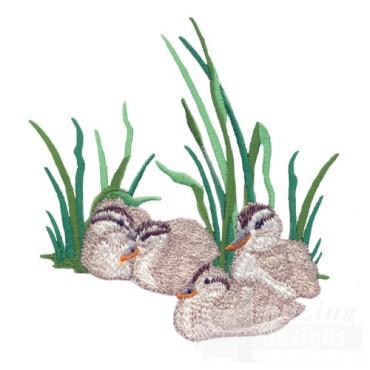 Nestling Ducklings