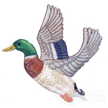 Fying Duck 2