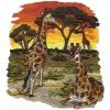 Giraffe Scene Serengeti Pride Embroidery Design