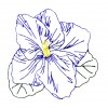 Single Violet Viola Embroidery Design