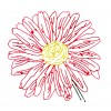 Single Daisy Bellis Perennis Embroidery Design