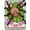 Hairy Tarantula