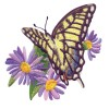 Butterfly 14 Embroidery Design