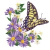 Butterfly 28 Embroidery Design