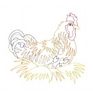Nesting Rooster Good Morning Heartland Embroidery Design