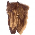 Brown Horsehead