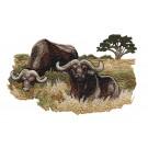 Buffalo Scene Serengeti Pride Embroidery Design