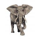 Elephant Serengeti Pride Embroidery Design