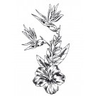 BOT428 TROPICAL FLORAL SKETCH EMBROIDERY DESIGN CLASSIC SINGLE DESIGN