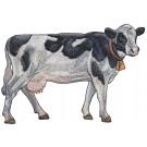 Cow Rustic Farm Embroidery Design