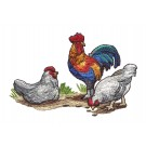 Chickens Rustic Farm Embroidery Design